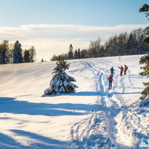 Obóz skiturowy w Beskidzie Sądeckim
